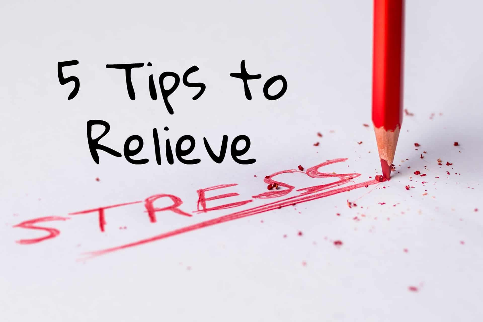 "A red pencil writing the word ""stress"" on a piece of paper"